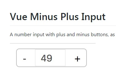 A number input with plus and minus buttons