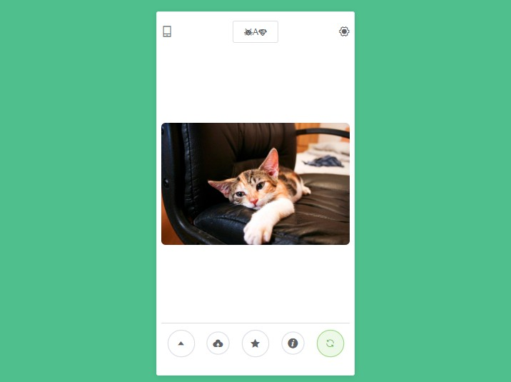 A Vue App for showing cats and dogs